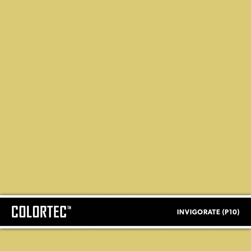 1-P10-Invigorate-ColorTec-Color-Swatch-by-SureCrete