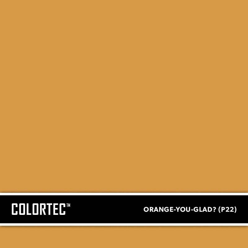 2-P22-Orange-You-Glad-ColorTec-Color-Swatch-by-SureCrete